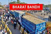 No Vegetable, Milk Supplies Amid Bharat Bandh Today, Say Farmers